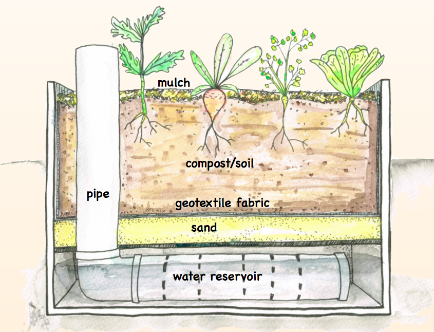 Make A Wicking Bed