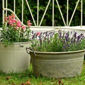 Container Gardening buckets