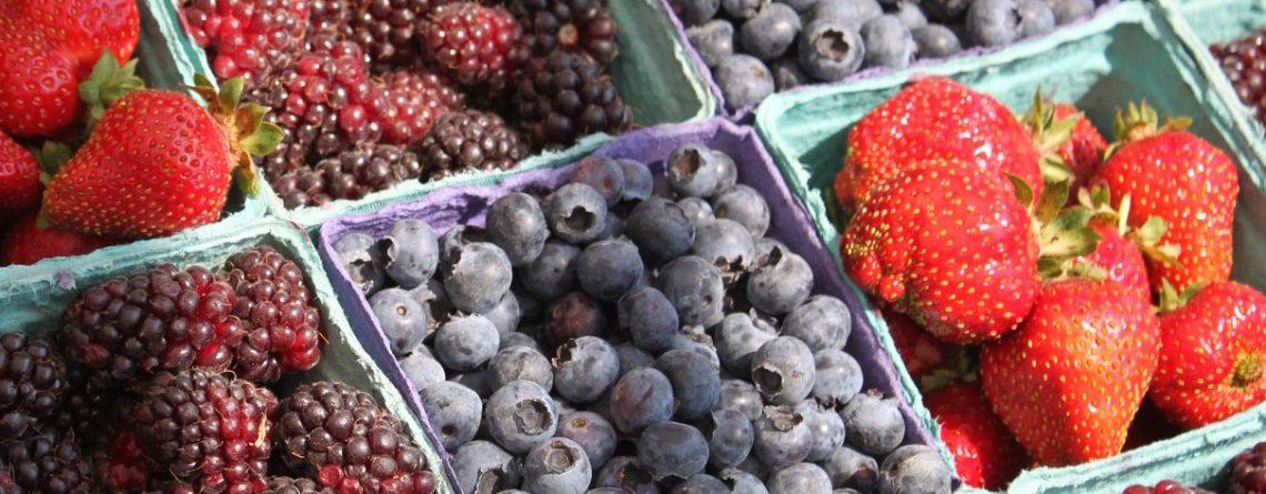Best Organic Farmers Market in inner City Brisbane…