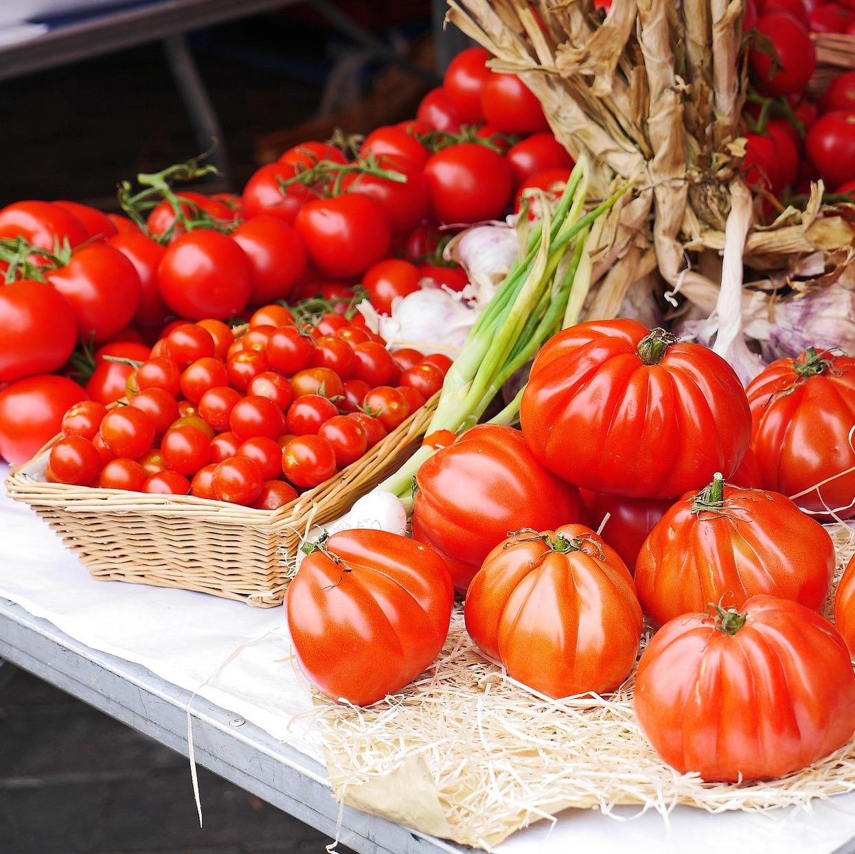 Organic Food Workshops Brisbane