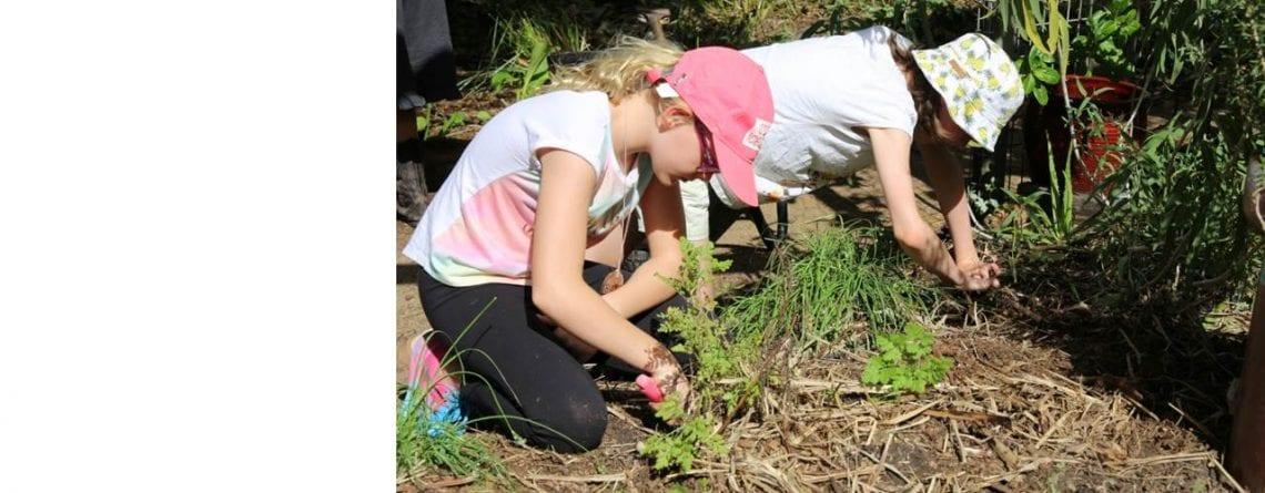 Earth Kids Programs