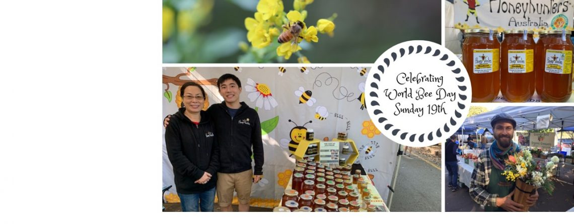 Celebrating World Bee Day on Sunday the 19th of May