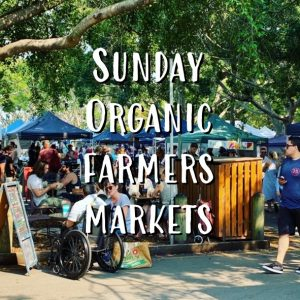 Sunday Organic Farmers Markets